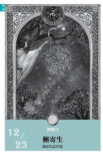 2016魔法手帳-槲寄生