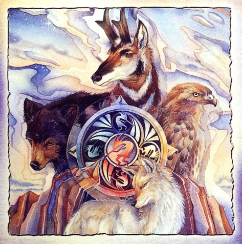 醫藥輪與力量動物