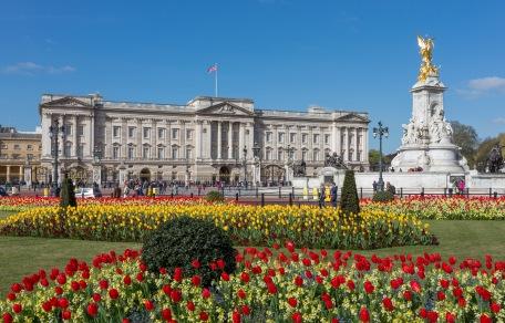 day02_buckingham_palace_from_gardens_london_uk