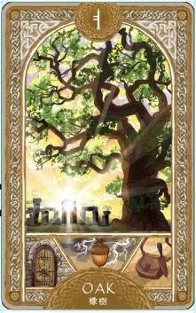 歐甘樹卡 (7) 橡樹