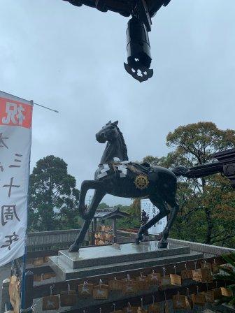 可能是被救的馬